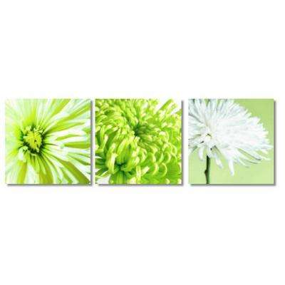 23.6 in. x 7.8 in x 0.75 in 3-Piece Lime Chrysanths Canvas Print Wall Art