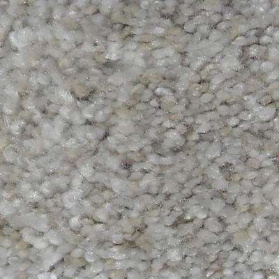 Carpet Sample - Immaculate Ii - Color Graceful Twist 8 in. x 8 in.
