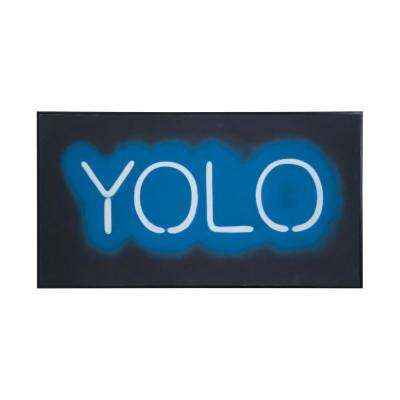 """33 in. x 61 in. """"Yolo"""" Hand Painted Framed Canvas Wall Art"""