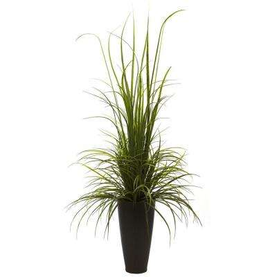 64 in. Indoor/Outdoor River Grass with Planter