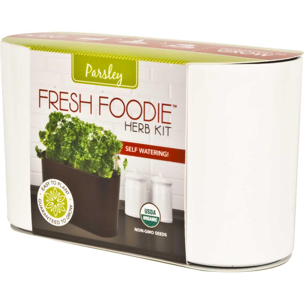 10 in. Fresh Foodie Parsley Grow Kit White Plastic Planter
