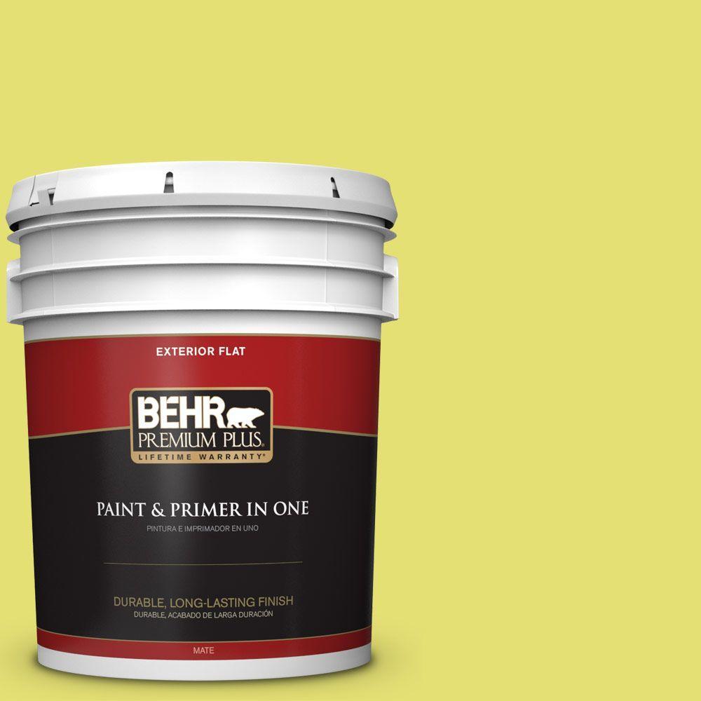 BEHR Premium Plus 5-gal. #400B-4 Citron Flat Exterior Paint