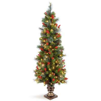 5 ft. Crestwood Spruce Entrance Artificial Christmas Tree with Clear Lights
