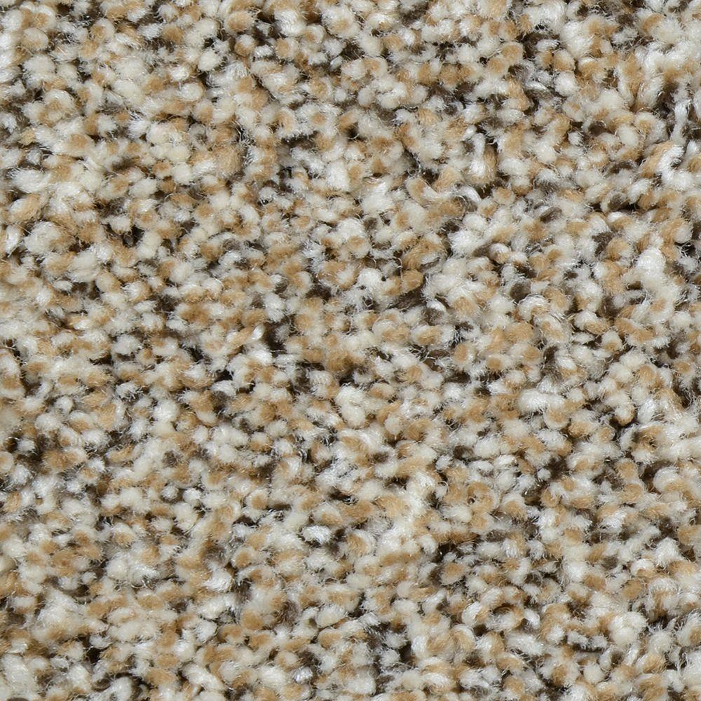 Home Decorators Collection Grayson - Color Reno Texture 12 ft ...