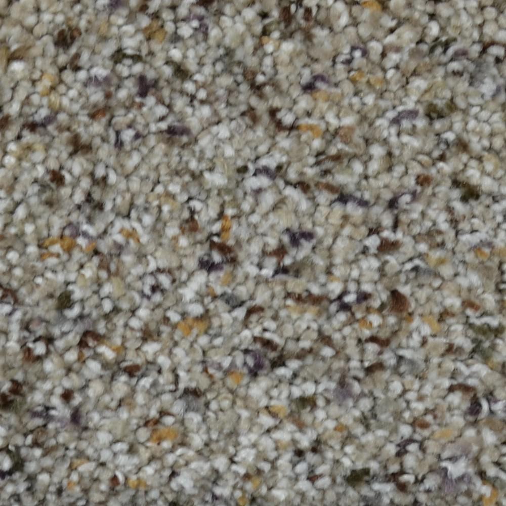 Lifeproof Carpet Sample Gratitude I Color Chisholm