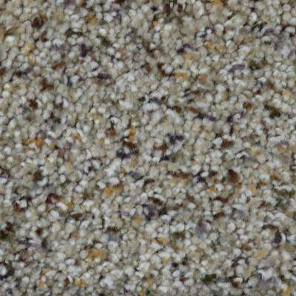 Carpet Sample - Gratitude I - Color Chisholm Texture 8 in. x 8 in.