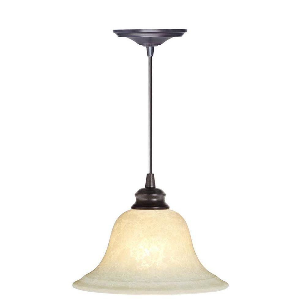 Home Decorators Collection 1-Light Brushed Bronze Instant