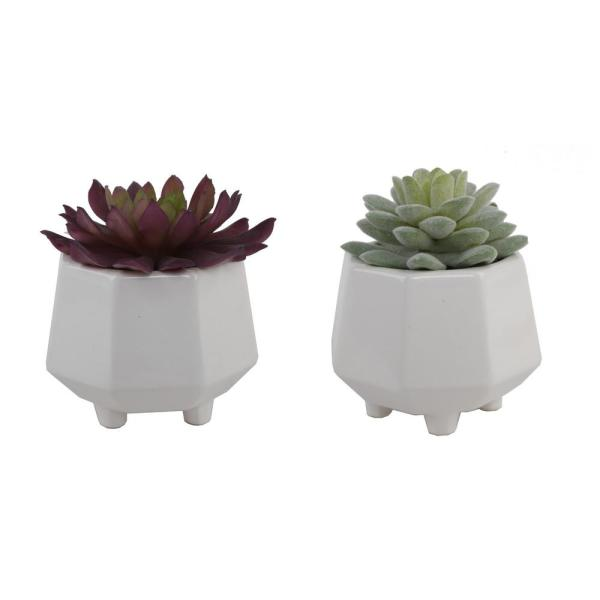 4 in. Set of 2 Faux Succulent in Hexagon White Ceramic Footed Planter