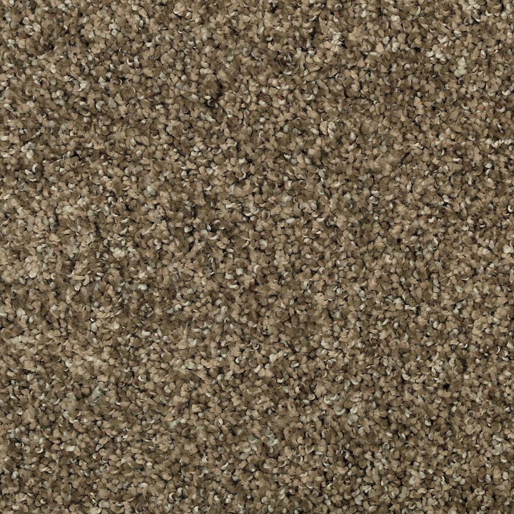Carpet Sample - Barx I - Color Desert Sun Textured 8 in. x 8 in.
