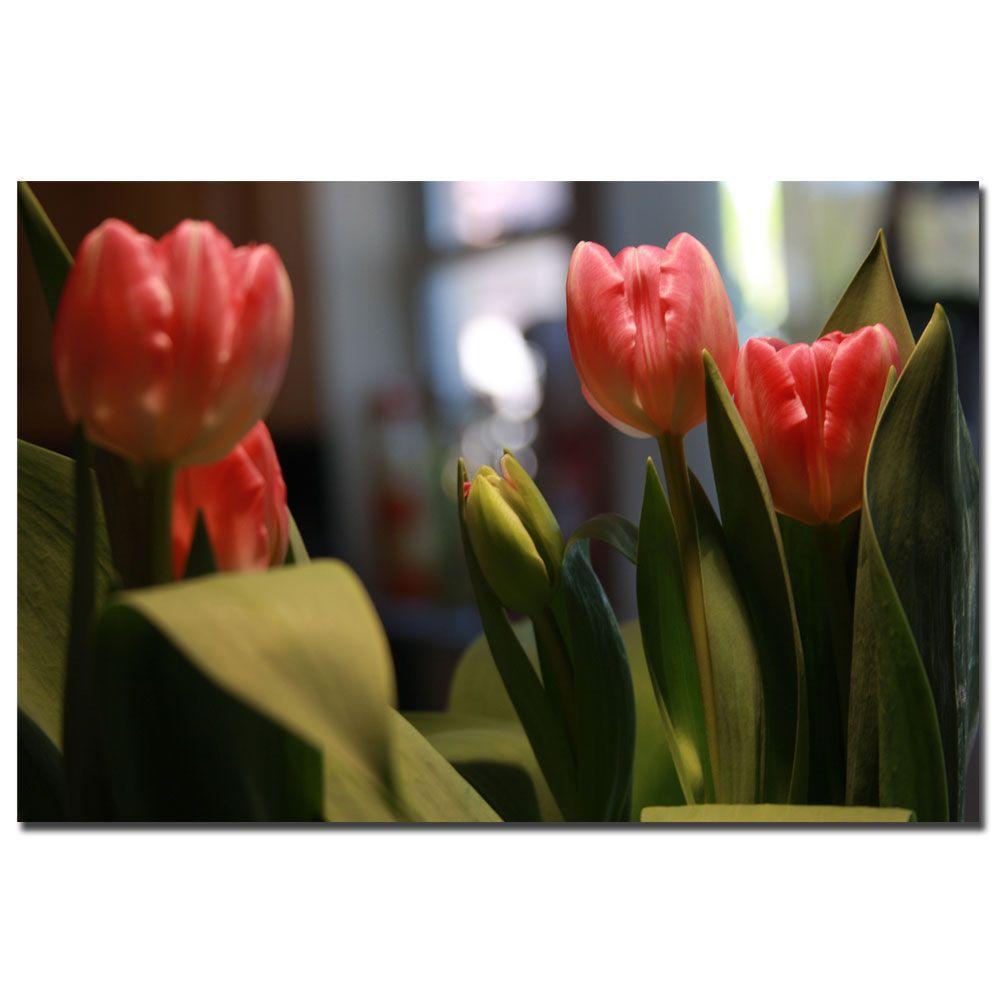 Trademark Fine Art 24 in. x 16 in. Tulips Canvas Art