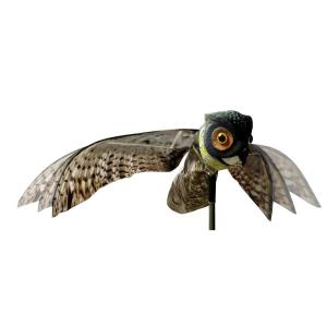 Prowler Owl With Flapping Wings