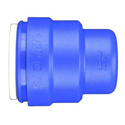 1/2 in. Blue Plastic Push-to-Connect End Cap Contractor Pack (10-Pack)