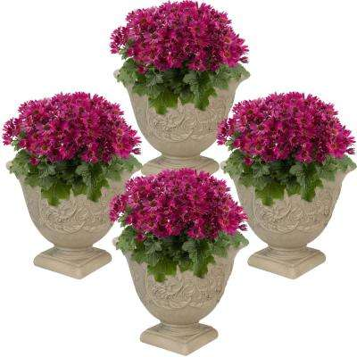 16 in. Beige Darcy Poly Flower Pot Planter (4-Pack)