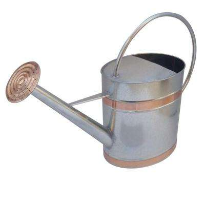 23.2 in. x 7.36 in. x 15.75 in. 2 gal. Silver Metal Watering Can