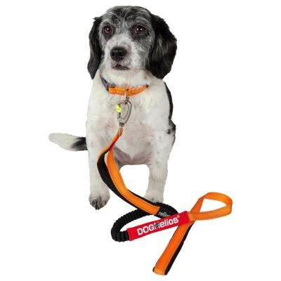Small Orange Neo-Indestructible Easy-Tension Sporty Embroidered Thick Durable Pet Dog Leash and Collar