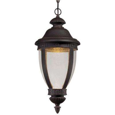 Wynterfield 1-Light Iron Oxide Outdoor LED Chain Hung