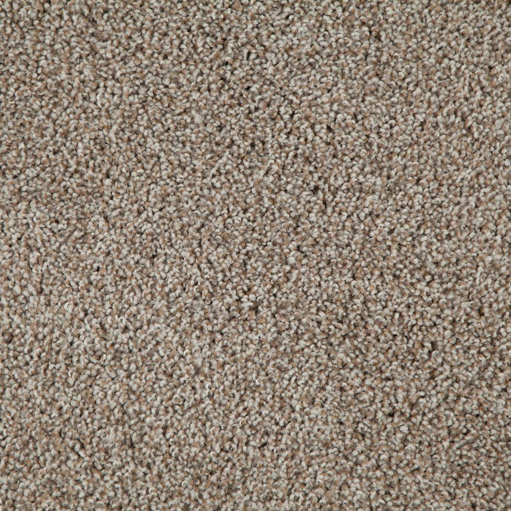 Carpet Sample-Americana - Color Sedona Texture 8 in. x 8 in.