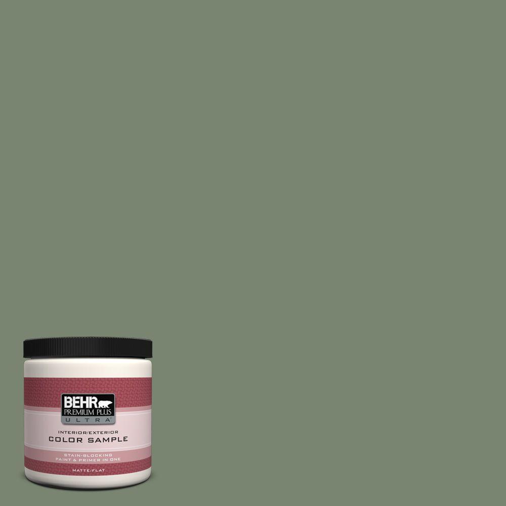 BEHR Premium Plus Ultra 8 oz. #440F-5 Winter Hedge Interior/Exterior Paint Sample