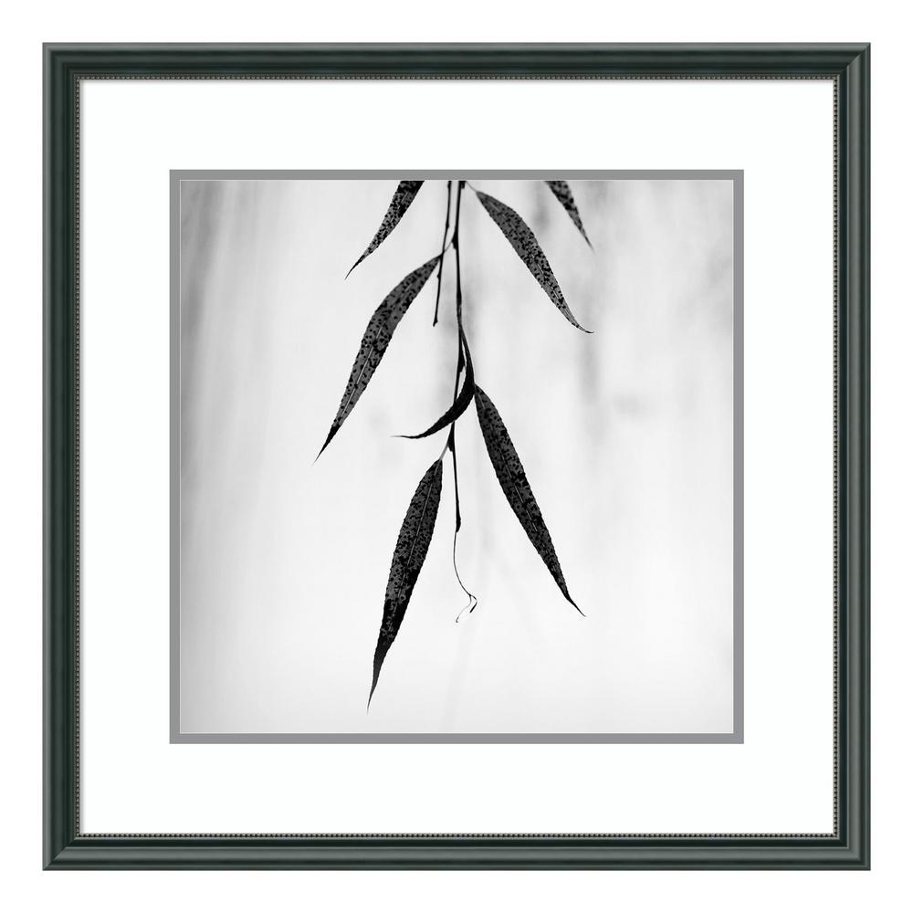 "Amanti Art ""Willow Print No. 2"" by Nicholas Bell Framed Wall Art"