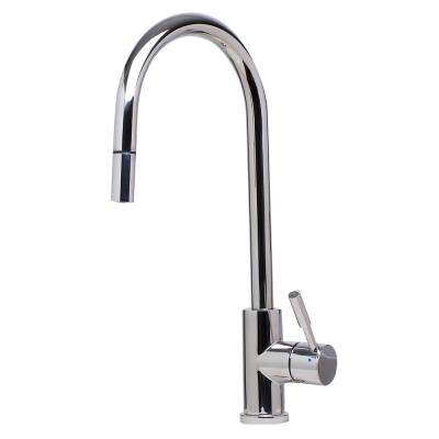 Single-Handle Pull-Down Sprayer Kitchen Faucet in Polished Stainless Steel