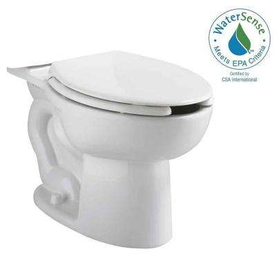 Cadet Elongated Pressure-Assisted Toilet Bowl Only with EverClean in White