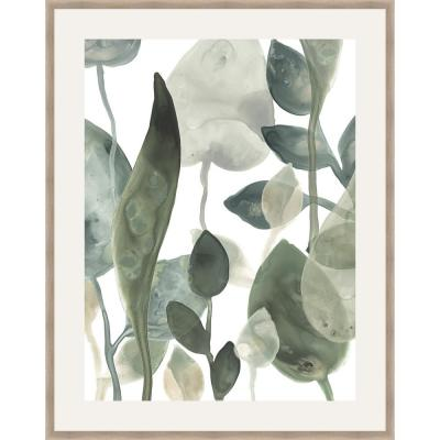 30 in. x 24 in. 'WATER LEAVES III' by June Erica Vess Framed Wall Art