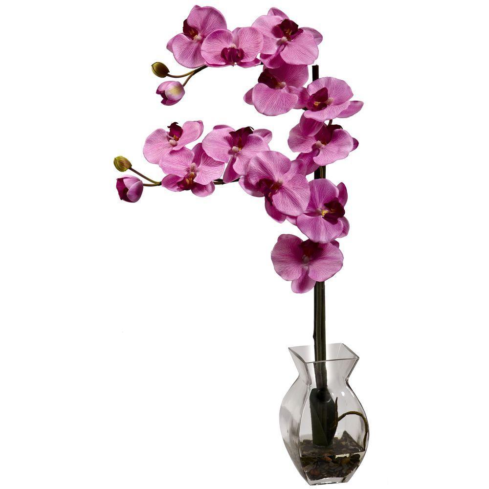 Phalaenopsis Orchid with Vase Arrangement in Mauve