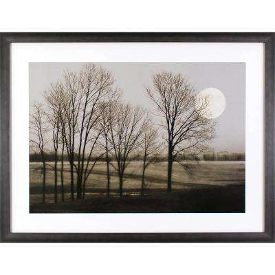 42 in. x 32 in. November Moon Printed Framed Wall Art