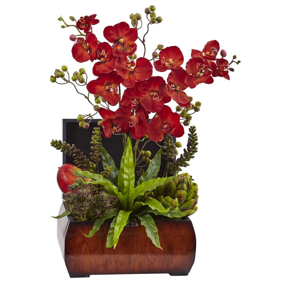 22 in. Autumn Orchid and Succulent Arrangement in Decorative Chest