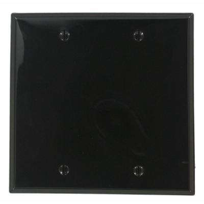 2-Gang No Device Blank Wallplate, Standard Size, Thermoplastic Nylon, Box Mount, Black