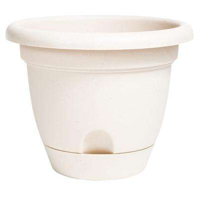 Lucca 12 in. Taupe Plastic Self Watering Planter
