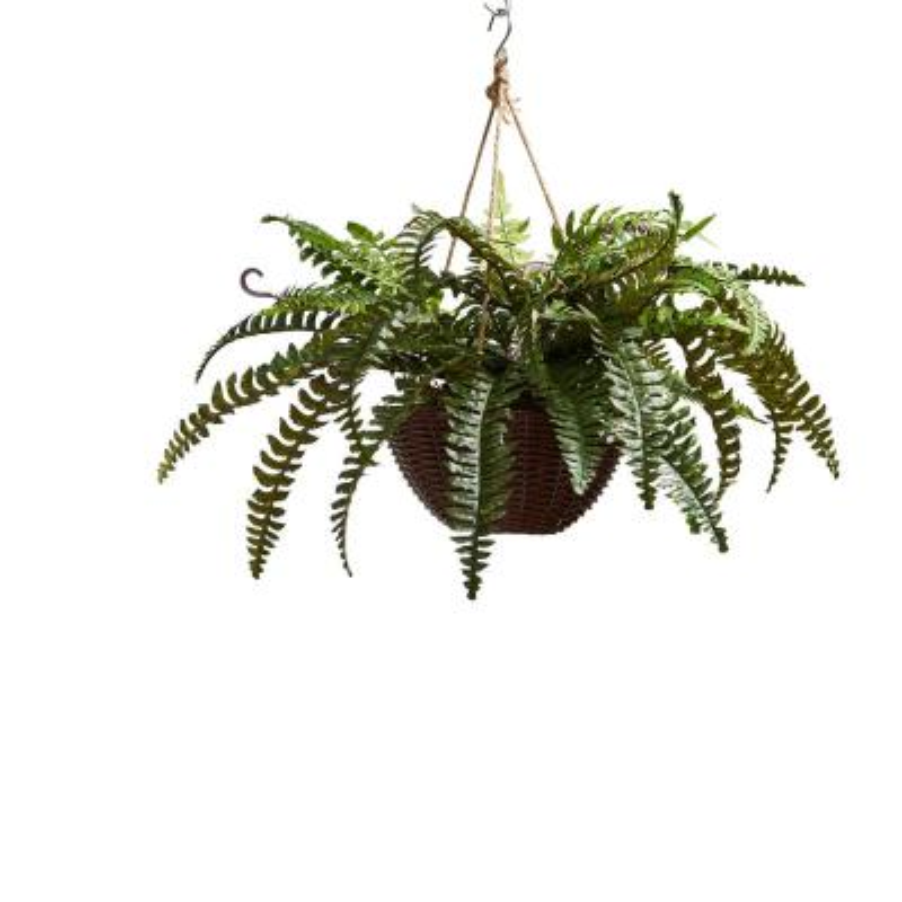 Faux Boston Fern Arrangement with Hanging Basket