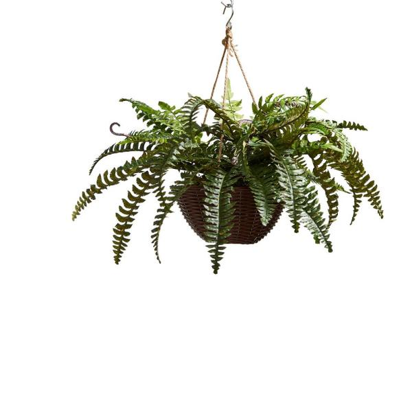 Faux Boston Fern Arrangement with Hanging Basket