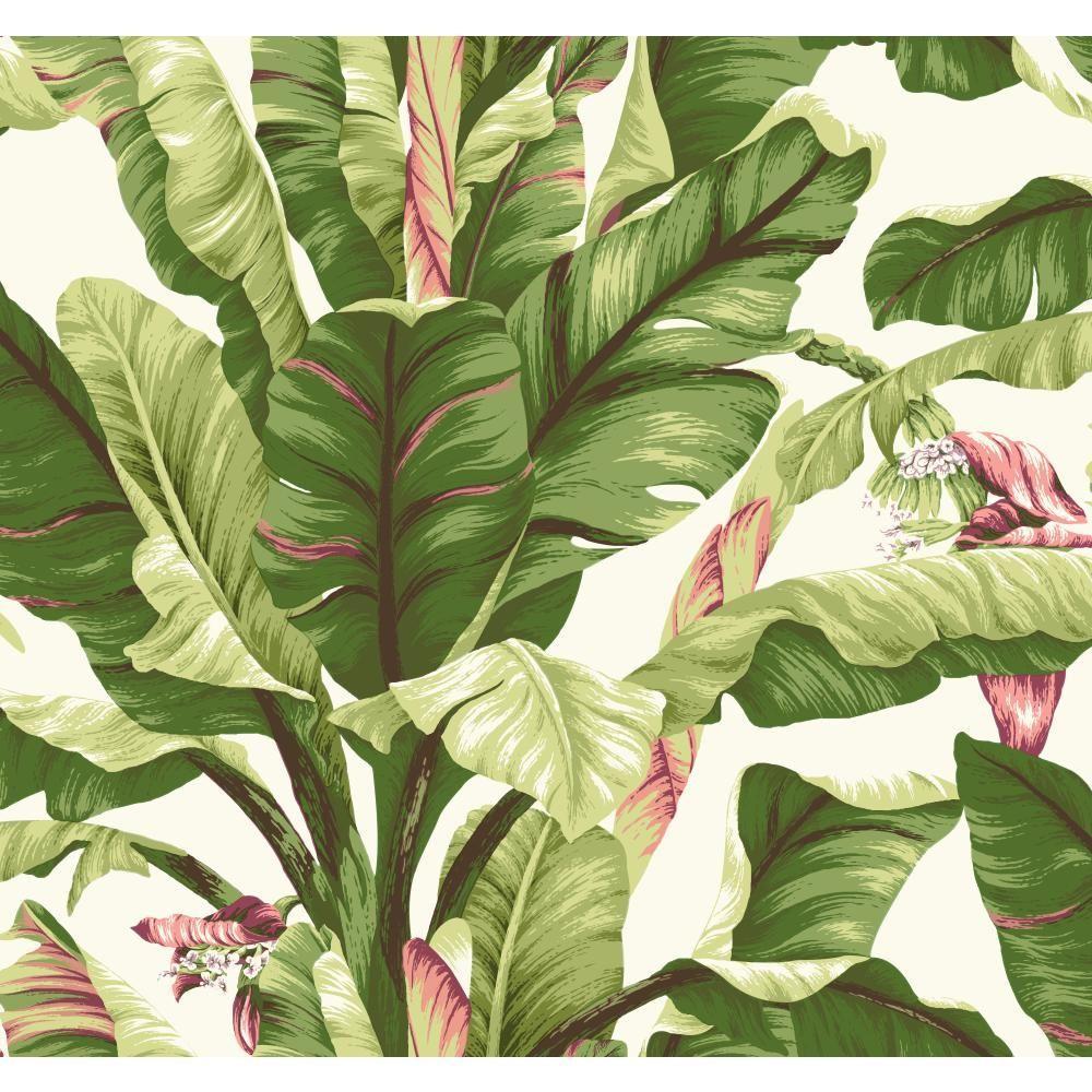 Tropics Banana Leaf Wallpaper