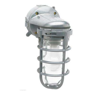 Industrial 1-Light Gray Outdoor Weather Tight Flushmount Wall Light Fixture