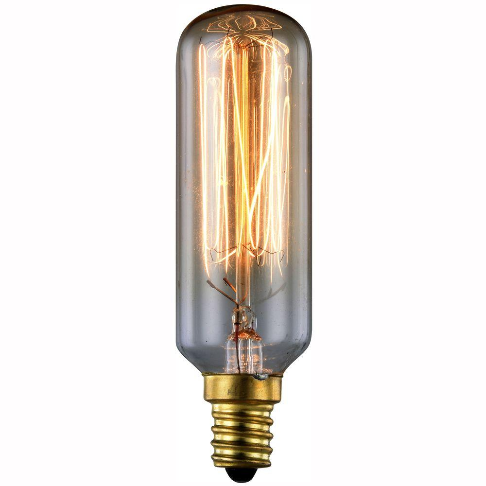 Elegant Lighting 40-Watt Incandescent E12 Vintage Edison ...