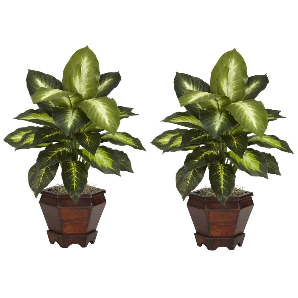 null 20.5 in. H Green Dieffenbachia with Wood Vase Silk Plant (Set of 2)