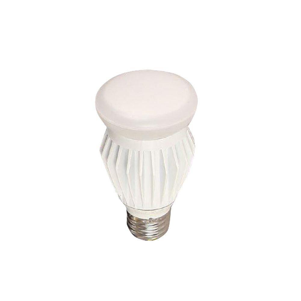 EcoSmart A19 13-Watt (60W) Bright White  LED Light Bulb (12-Pack)