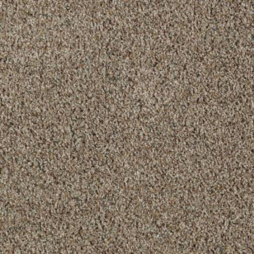 Lifeproof carpet sample kaa i color stone sculpture