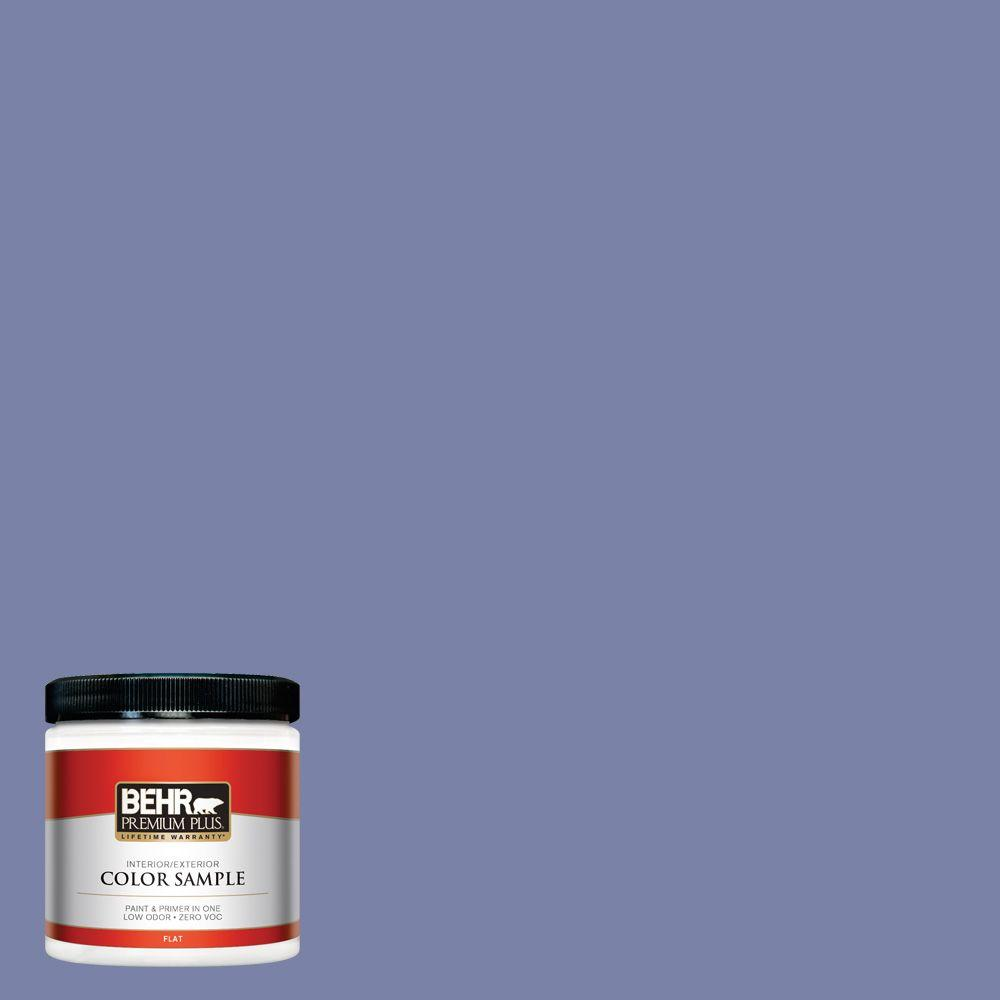 8 oz. #620D-5 Romanesque Interior/Exterior Paint Sample