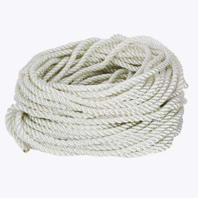 3/8 in. x 100 ft. White Twisted Nylon and Polyester Rope