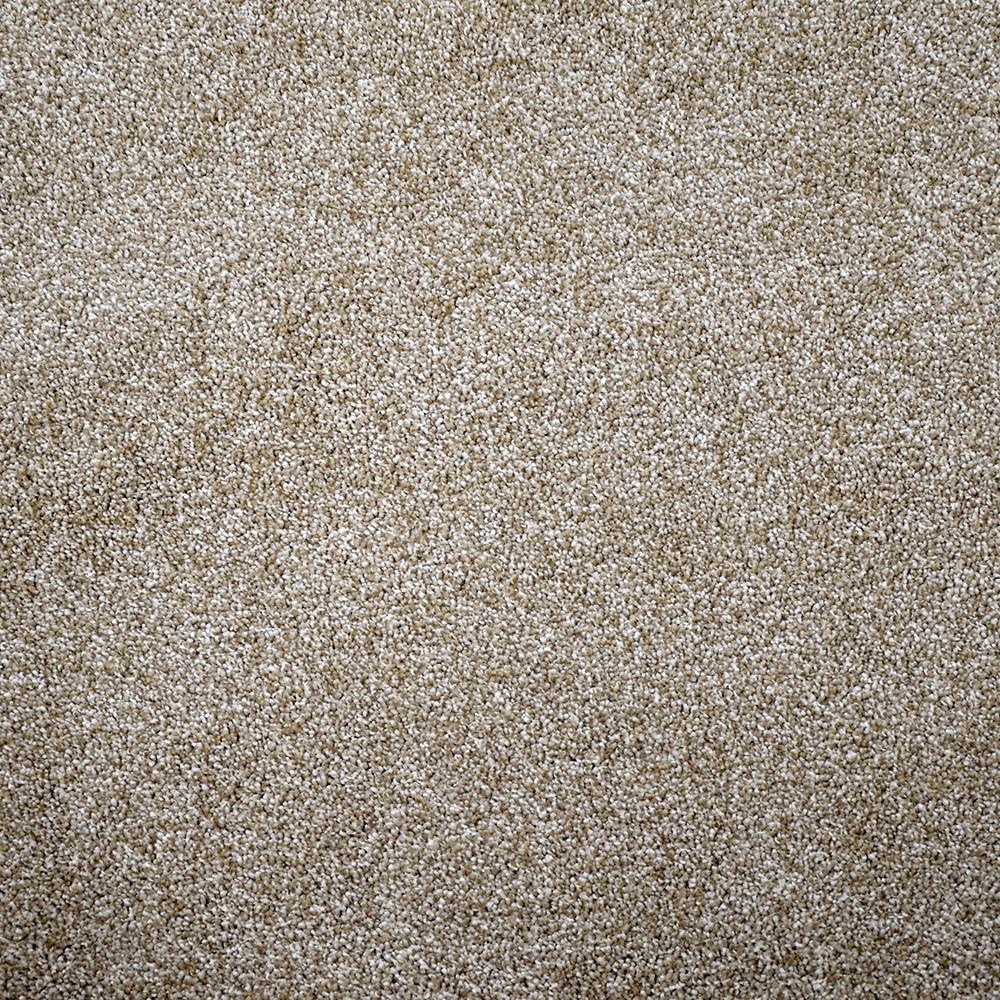 Fast Performer - Color Sonoma Texture 12 ft. Carpet