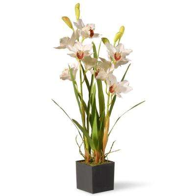 33 in. White Orchid Flowers