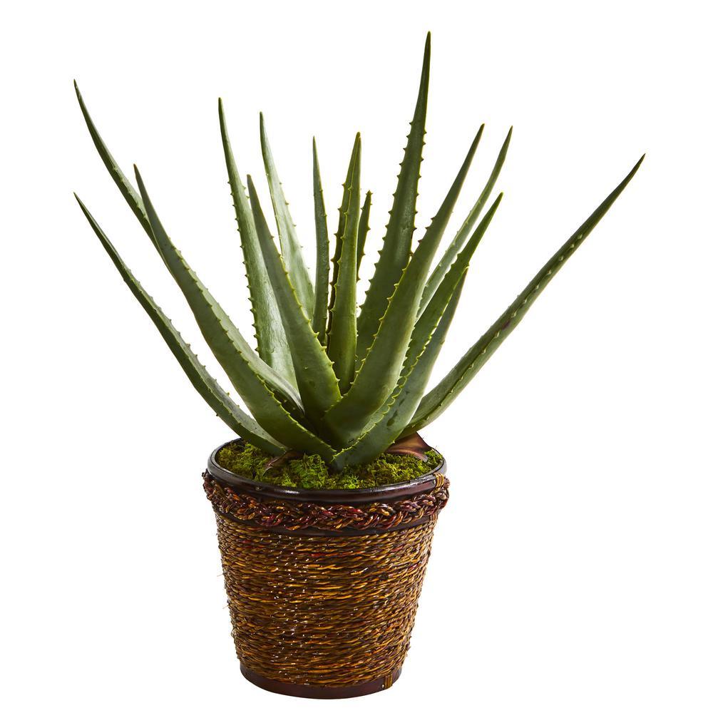 Indoor Aloe Artificial Plant in Basket