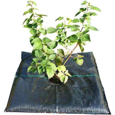 GardenMat 24 in. Square Garden Bed Hydration Mat for Single Plants (Twin Pack)