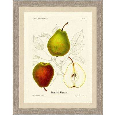 Pear Sketch Framed Archival Paper Wall Art (20x24)