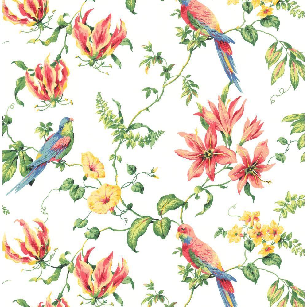 York Wallcoverings Birds Wallpaper Cj2801 The Home Depot