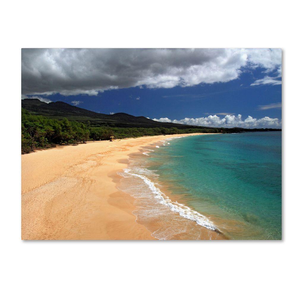 14 in. x 19 in. Makena Maui Canvas Art