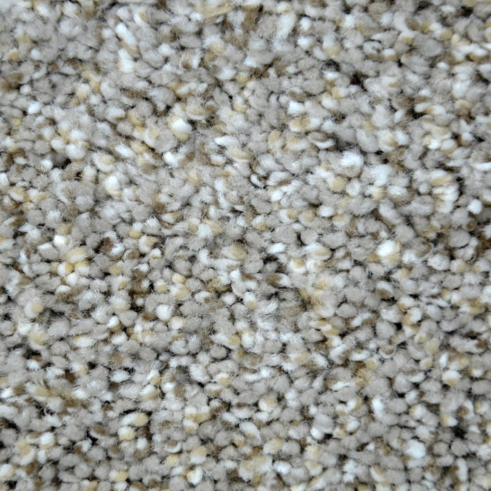 Immaculate I - Color Innocent Twist 12 ft. Carpet