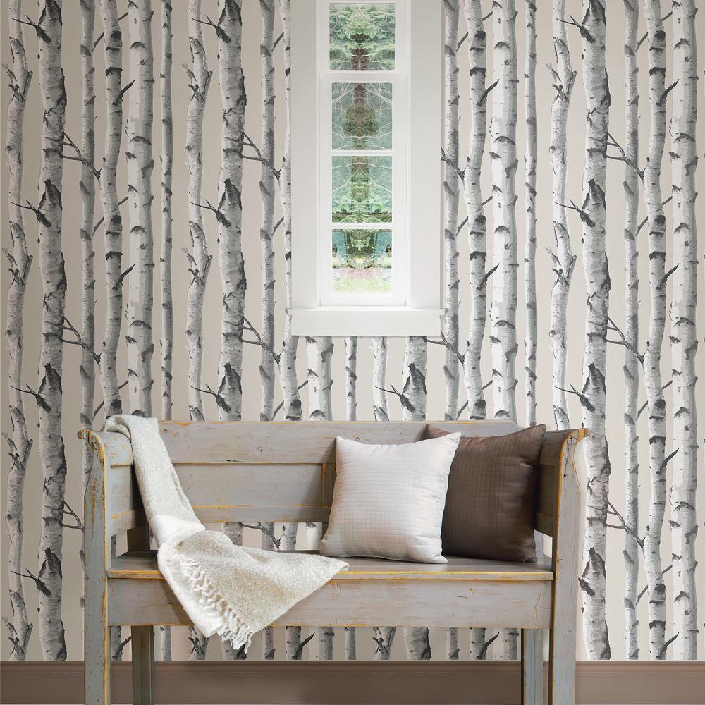 6 Nuwallpaper Multi Color Birch Tree Wallpaper